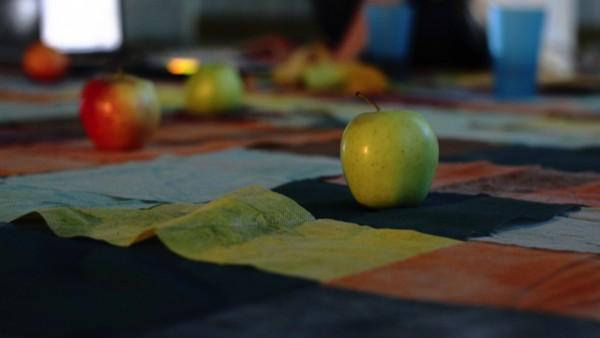 picnic_OM